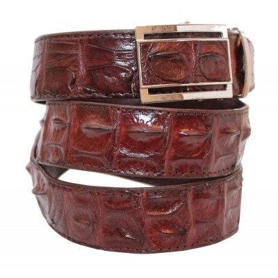 Ремінь чоловічий зі шкіри крокодила коричневий 105 ALB-B Brown